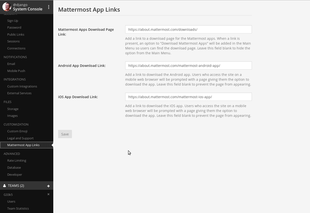 Bild: Mattermost WEB-GUI - CUSTOMIZATION Mattermost App Links
